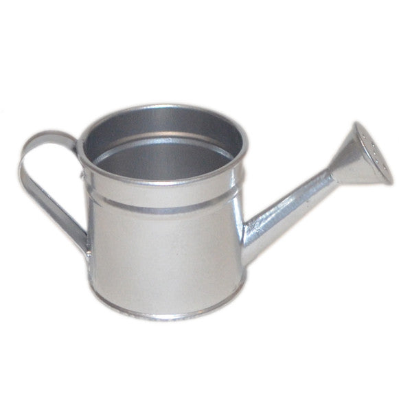 Mini Decorative Watering Can - Silver - Wedlock Shop