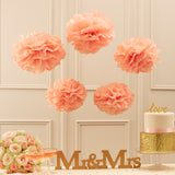 Tissue Paper Pom Poms - Pastel Pink - Pastel Perfection - Wedlock Shop - 1