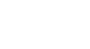 The Common Man Store