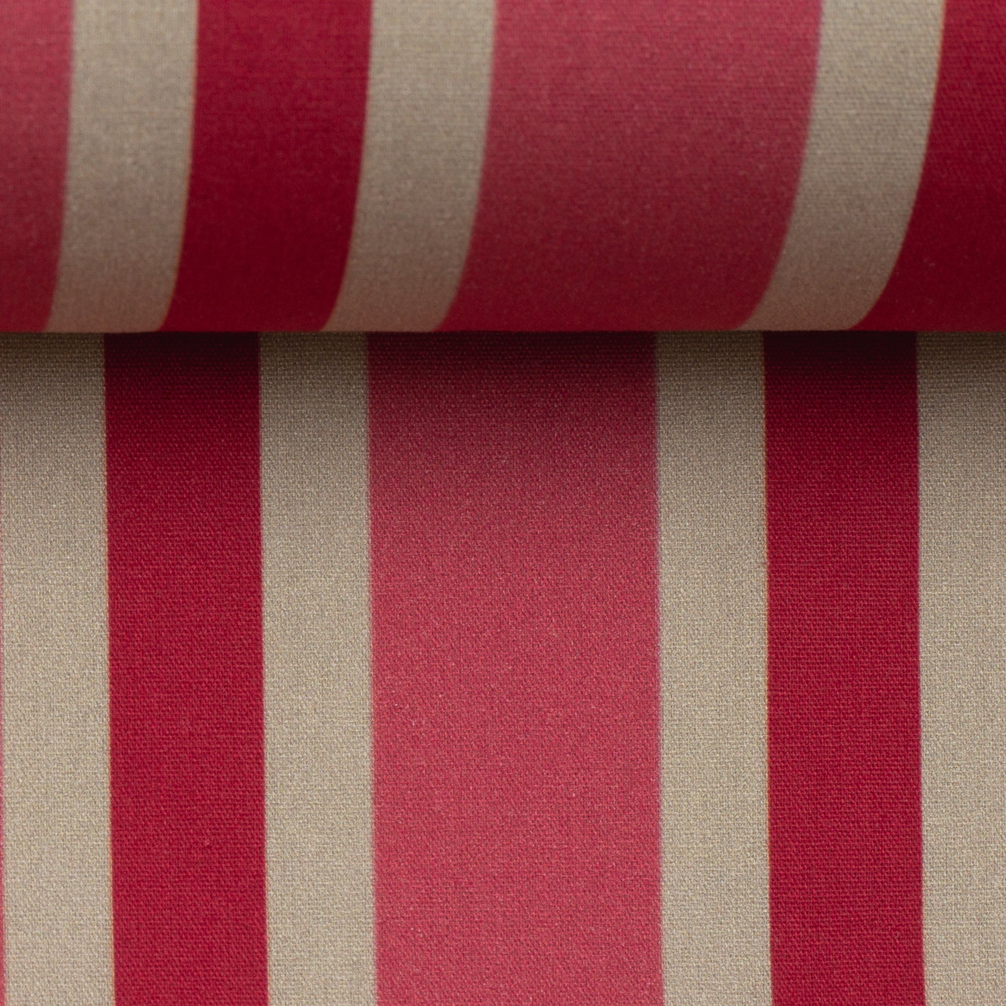 Baumwollstoff | Cherry Picking | Planted Stripes | pink
