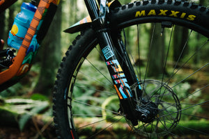 Badgal Brooky Artist Series - RockShox Pike Decal