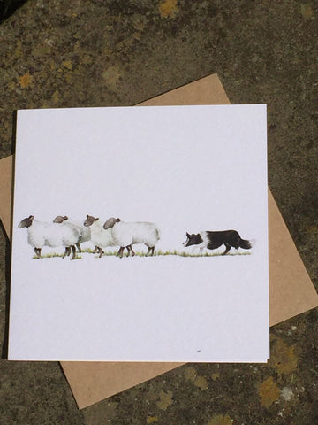 'Come Bye' Collie & Sheep Greeting Card