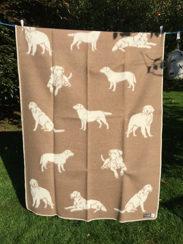 Labrador Woollen Blanket/Throw
