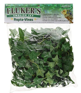 Fluker's Repta Vines English Ivy