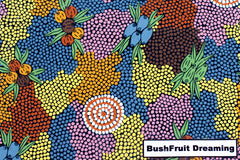 Bush Fruit Dreaming Scarf SHORT
