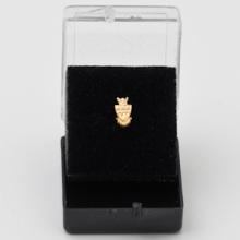 Coat of Arms Recognition Pin