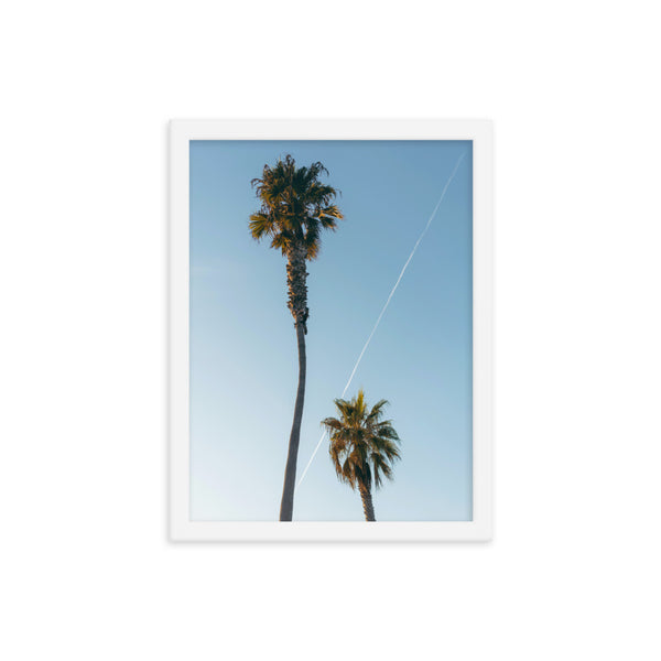 Framed Palm Trees Poster