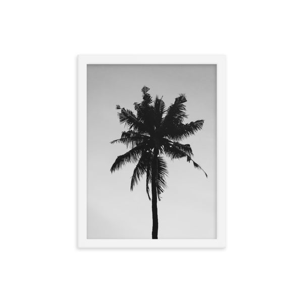 Framed Palm Tree Poster