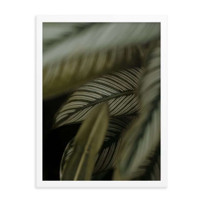 Framed Green Leaves Poster