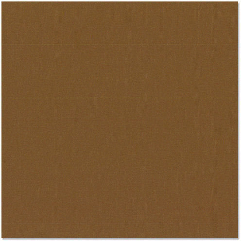 Bazzill 12x12 Cardstock - Chocolate