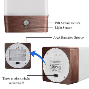 Glowing Night Lamp with PIR Motion & Light Sensor