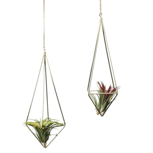 Open Geometric Hanging Planter for Decor