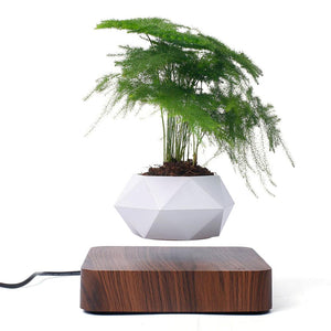 White Resin Planter Levitating on Wooden Base