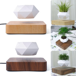 Levitating Flower Pot Planter on Oak Base