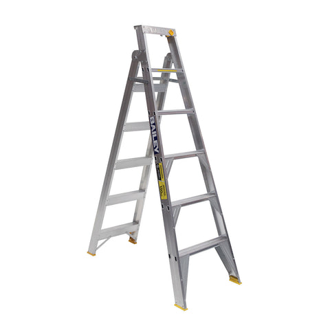 Pro Dual Purpose Ladder 150kg