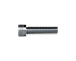 Socket Cap Screw Zinc M6 x 15mm
