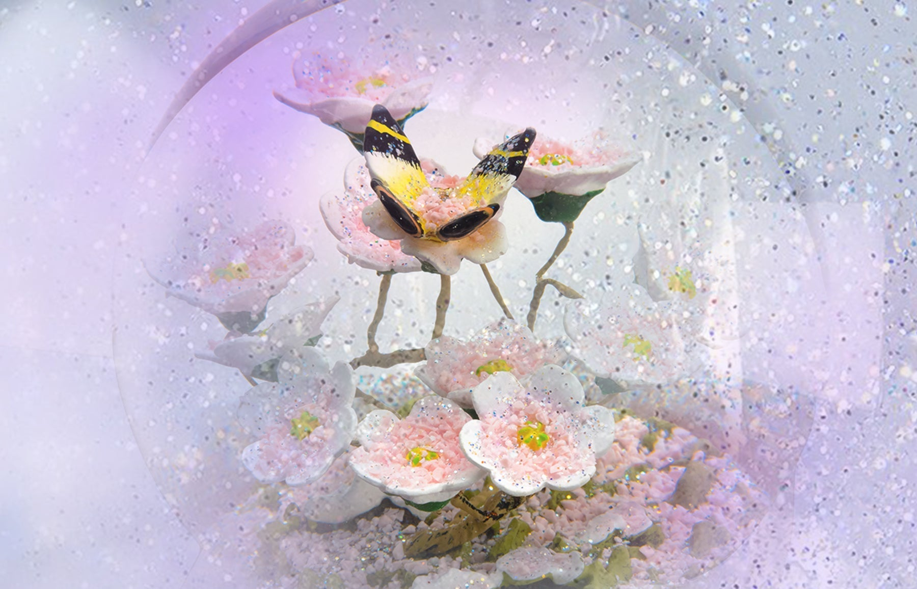 CoolSnowGlobes Blog