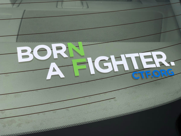 Born a Fighter Vinyl Decal