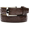 "Belvedere Ostrich Quill Belt Brown / Fits up to 44"", Belt - BELVEDERE, Levine Hat Co. - 1"