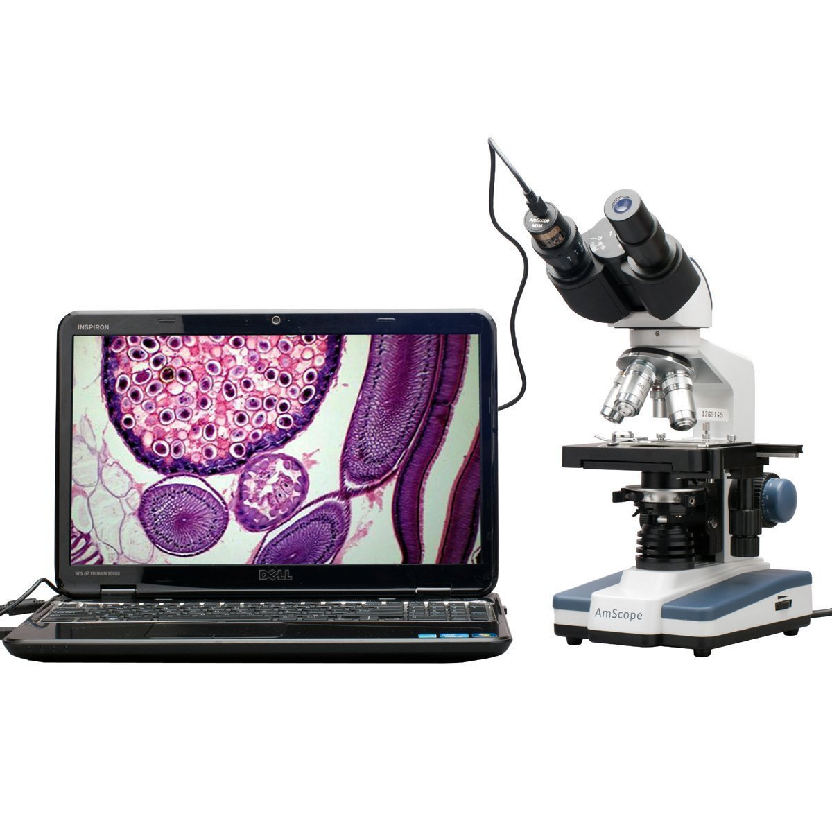 AmScope 40X-2500X LED Digital Binocular Compound Microscope w 3D Stage + 5MP USB Camera
