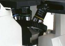 Long Working Distance Objectives for Accu-Scope EXI-300 Microscope