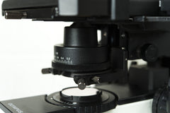 Olympus BX40 Dual Viewing Microscope