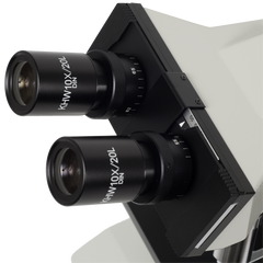 Eyepieces for Meiji ML5000 Microscope Series
