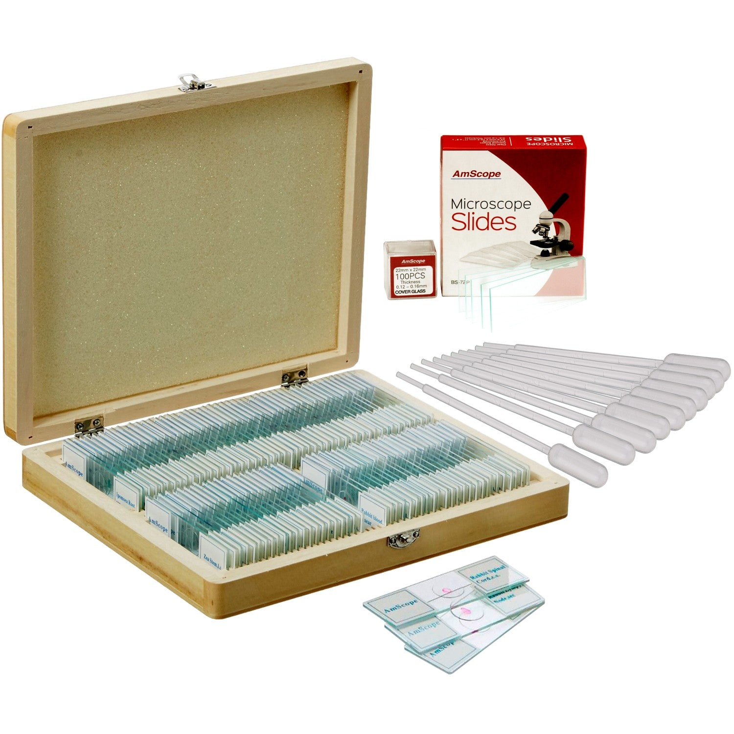 100 Biology Prepared Microscope Slides, Blank Slide Coverslip Set and Pipettes