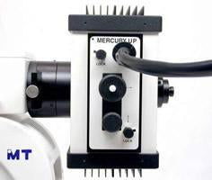 Meiji MT6000 Fluorescence Microscope Series