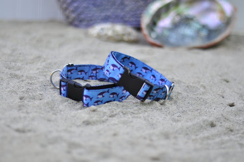 'The Moby' -Our first collar prototype