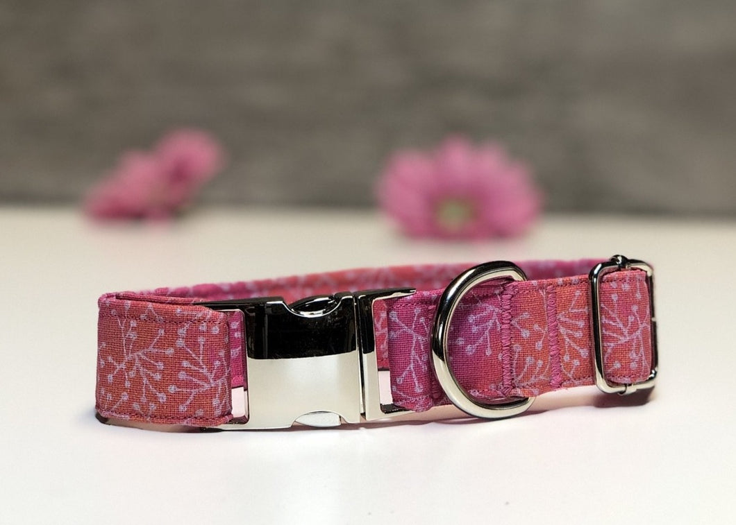 Make a Wish - Dog Collar