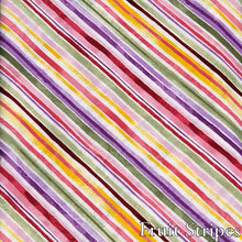 Load image into Gallery viewer, Fruit Stripes- Dog Collar