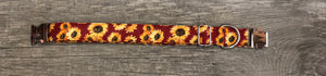 Autumn Sunset- Dog Collar