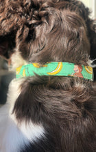 Load image into Gallery viewer, George Gone Wild- Dog Collar