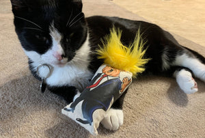 President Donald Trump Kitty Kicker - Cat Toy
