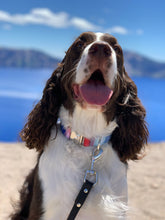 Load image into Gallery viewer, Victoria- Dog Collar