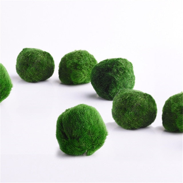 Japan Genuine Aquarium Ball Landscaping 1cm Chlorella Algae Marimo Happy Environmental Green Seaweed Ball EZLIFE PT0305