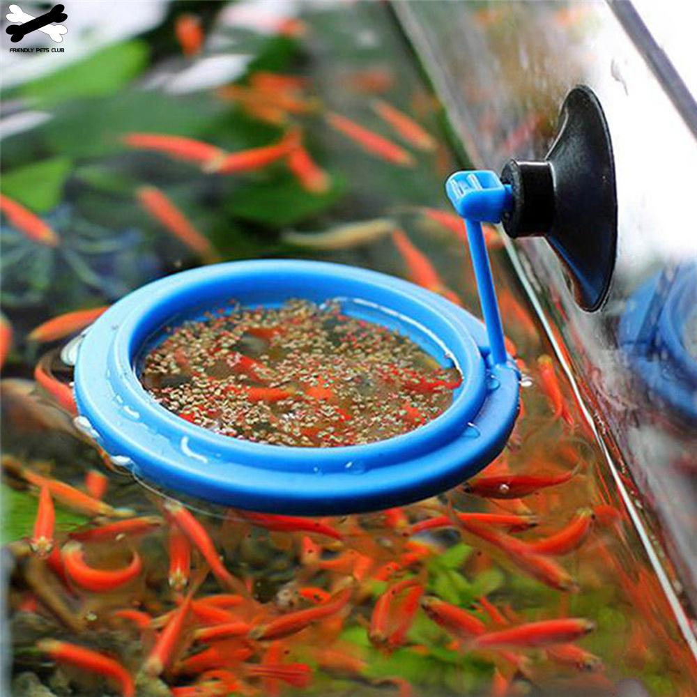 New Aquarium Feeding Ring Fish Tank Station Floating Food Tray Feeder Square Circle Accessory Water Plant Buoyancy Suction Cup 2