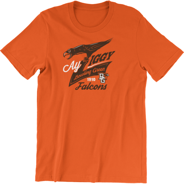 BGSU Falcons Ay Ziggy Spirit T-Shirt
