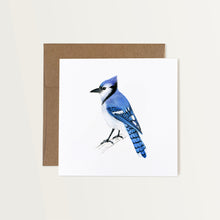 Load image into Gallery viewer, Blue Jay Card
