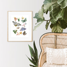 Load image into Gallery viewer, Butterflies and Moths Art Print
