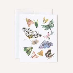 Butterflies and Moths Card