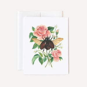 Stag Beetle and Rose Card
