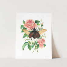 Load image into Gallery viewer, Stag Beetle and Rose Art Print