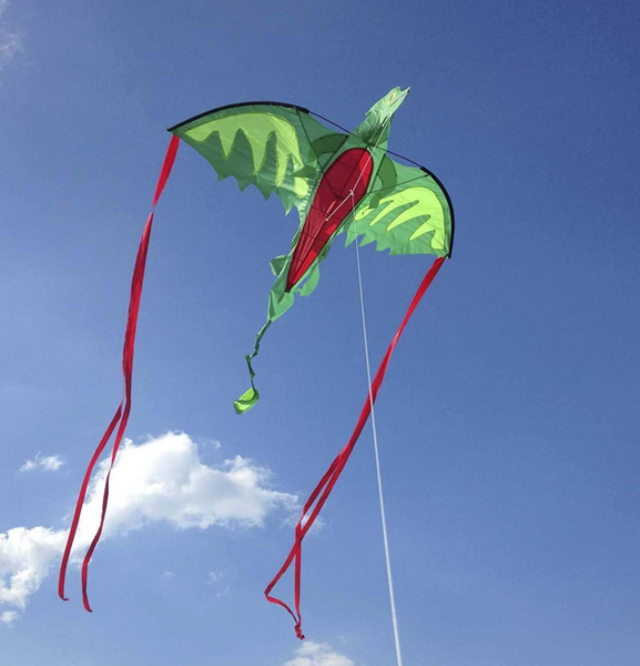GIANT Winged Dragon Kite