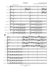 Cibulka (Heilmair): Claroness for clarinet choir