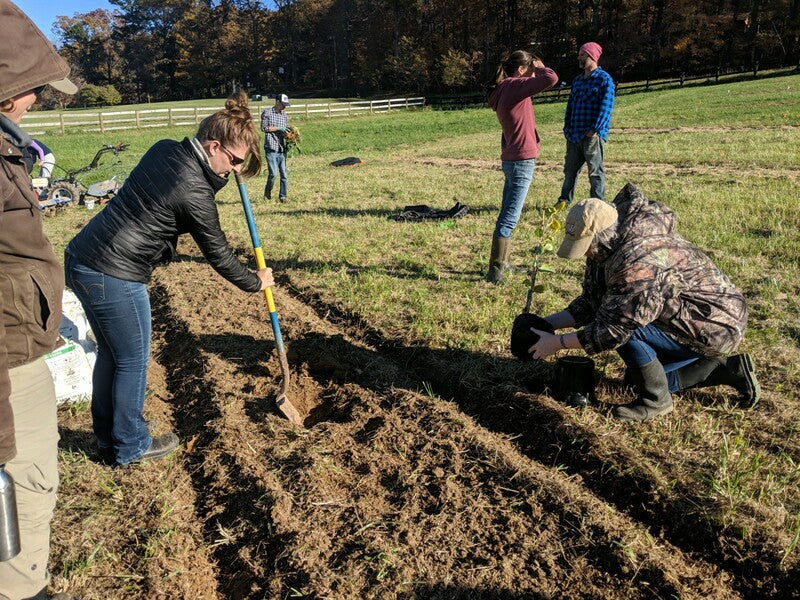 image shows attendees doing hands-on work digging drains and doing other earthwork as part of the course