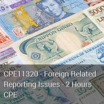 CPE11320 - Foreign Related Reporting Issues - 2 Hours CPE