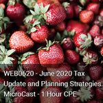 WEB0620 - June 2020 Tax Update and Planning Strategies MicroCast - 1 Hour CPE