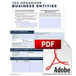 2020 Business Organizer Form-Fill PDF